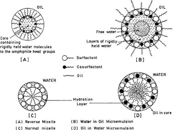 colloidal soft matter as drug delivery system
